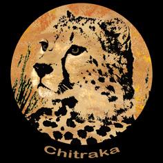Chitraka Activities