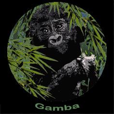 Gamba Activities