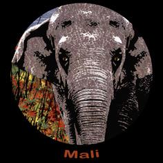 Mali Activities