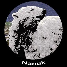 Nanuk Activities